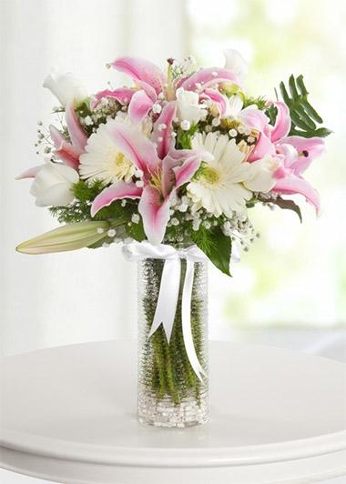 Taptaze Bahar Çiçekleri